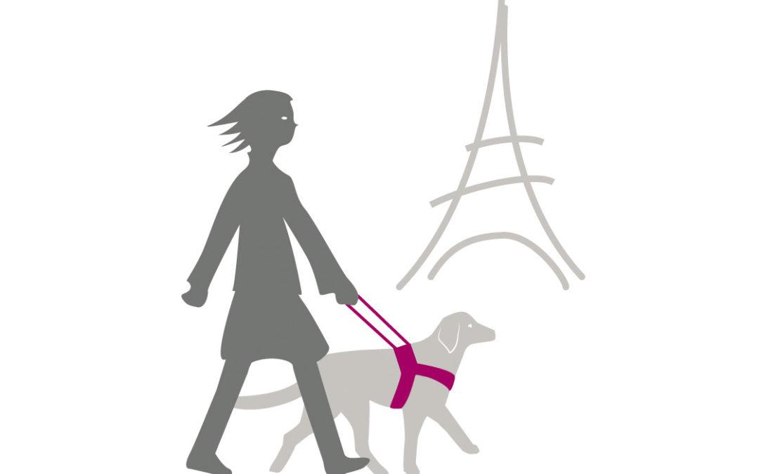 Ecole des chiens guide